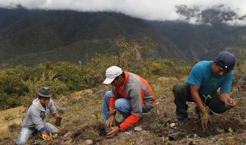 Utopia or reality: can South America lead a fossil-free future?