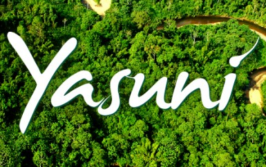 Leaving the Oil in the Ground: Yasuni's initiative