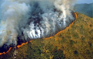 Mandatory Credit: Photo by Sipa Press / Rex Features AERIAL VIEW OF AMAZON RAINFOREST DESTRUCTION AMAZON RAINFOREST DEFORESTATION, BRAZIL - 1989 DEFORESTATION TIMBER WOOD ECOLOGY CLEARING TREE VEGETATION DEAD LOGGING ENVIRONMENT POLLUTION FIRE BURNING  AMAZON RAIN BRAZIL - 1989 153587j