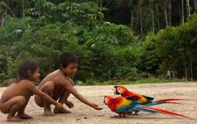 Buen vivir: the social philosophy inspiring movements in South America
