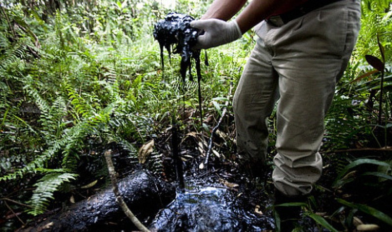 The battle over Ecuador's oil takes a new twist